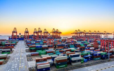 Apply for a grant to help SME businesses new to importing or exporting